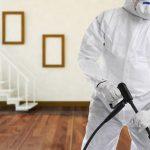 ارخص رش مبيدات ومكافحة حشرات الرياض